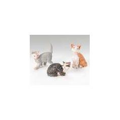 Cats - $22.00