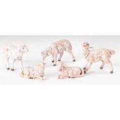 White Sheep - $27.50